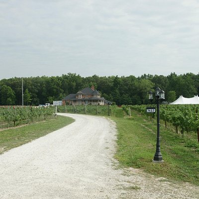 Entrance to Muscedere Vineyards
