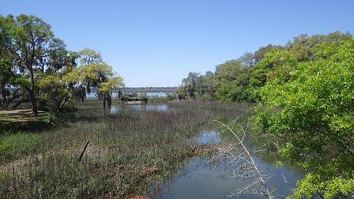 Plenty of Marsh Vistas!