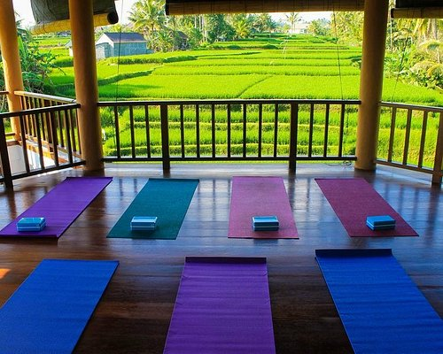 Boutique yoga studio in the rice fields of Ubud, Bali