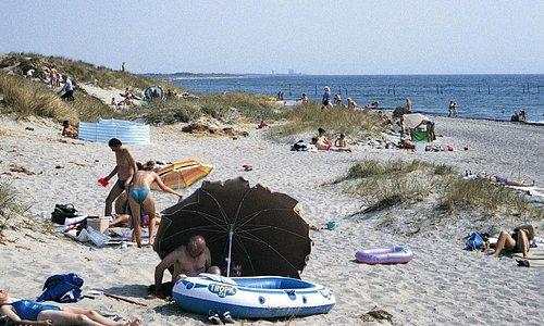 Beach near Western Camp (300 meter)