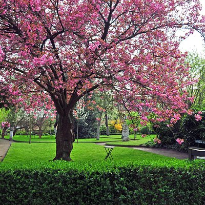 An oasis of peace in the middle of town, the beguinage