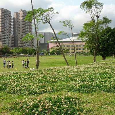 Tianmu sport park