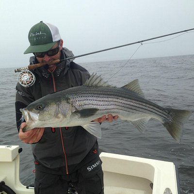 Greasy Beaks with a Striped Bass from Boston, MA