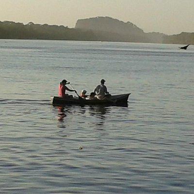 Canoeing at Tortuguero lagoon