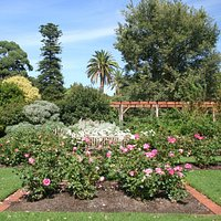 st kilda gardens