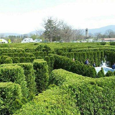 Luray Garden Maze