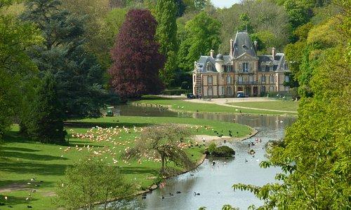 Le château et l'étang
