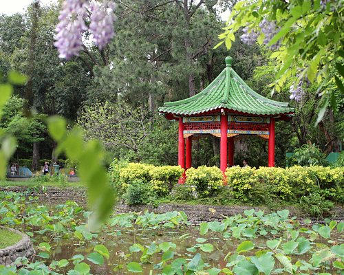 Taipei: Botanical Garden  台北植物園