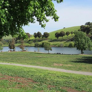 Ed Levin County Park  ( Fishing, Dog Park) Milpitas, CA