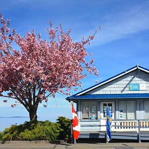 Qualicum Beach Visitor Info