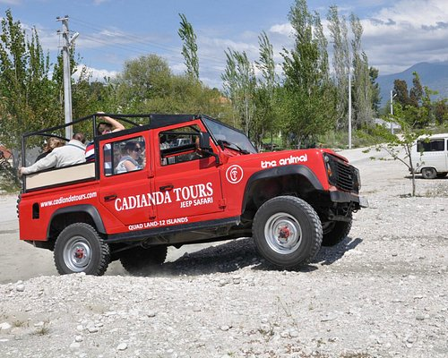 animal's off road experience