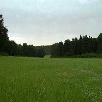 centro visite bosco dei guardiani