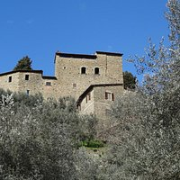 """""""Castello di Sezzate"""" seen by the underneath olive grove"""