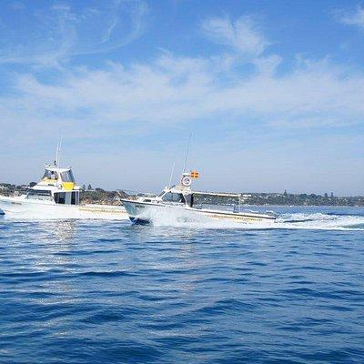 Proline Fishing Charters Boats