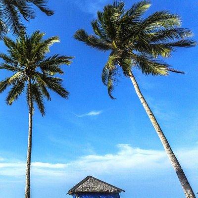 Beautiful of Trikora Beach