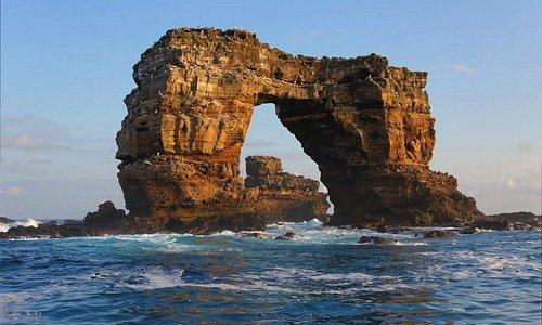 Darwin's Arch - September 2013