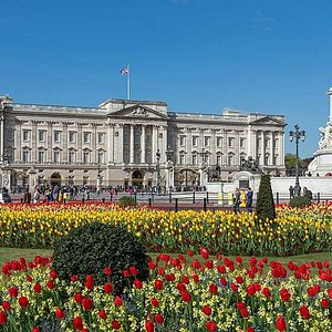 Buckingham Palace seen from gardens