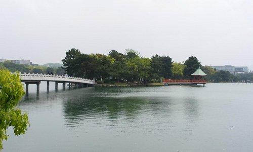 the Ohori park