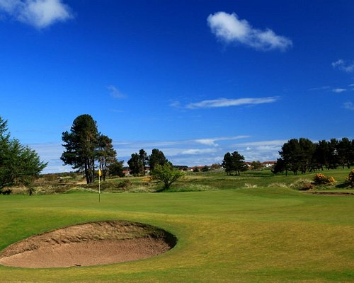 10th Green Monifieth Medal Course