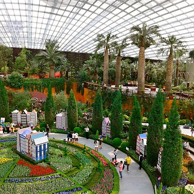 """""""tulip mania"""" at the Flower Dome (April 2014 event)"""
