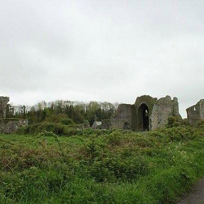 Ballybeg Abbey