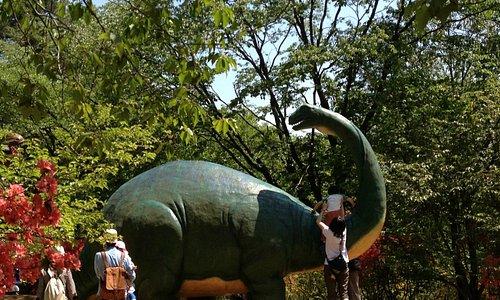 森林公園内の恐竜広場