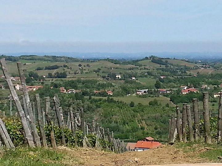 Le nostre colline... our Moscato land 1