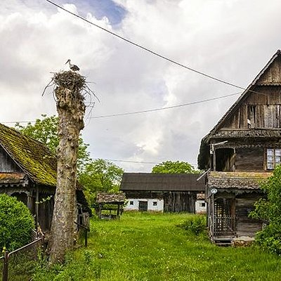 Wooden houses and stork