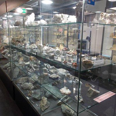 Sala dei minerali e fossili
