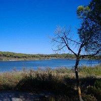 Laguna El Portil