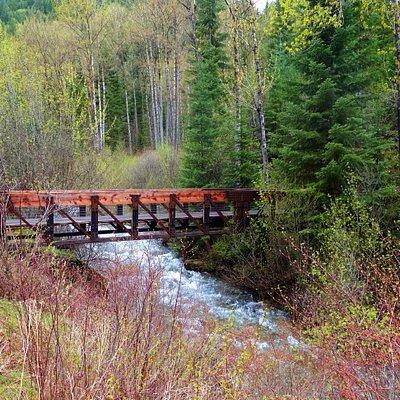 Bridge at start of trail