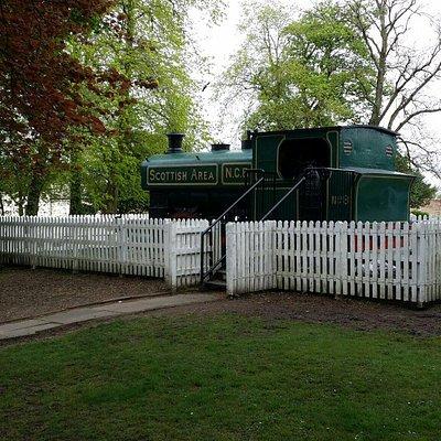 The train.