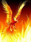 Phoenix011973