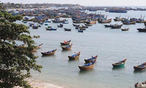 Fishing harbor in Mui Ne