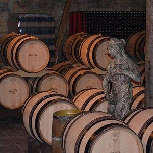 In the wine cellar