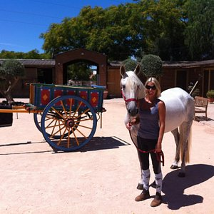 Country Riding Centre. Silves