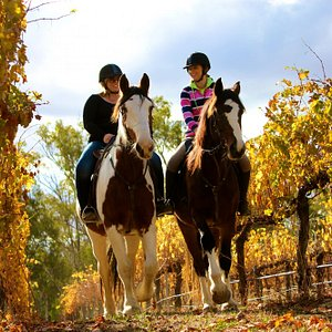Horseback Winery Rides 7Overnight Packages