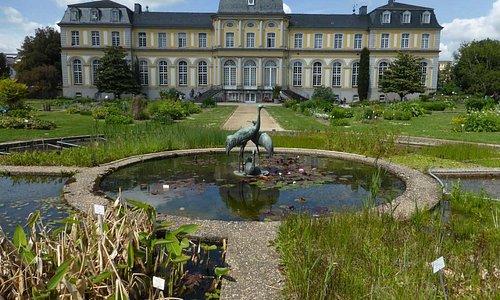 Südostseite mit Botanischem Garten davor