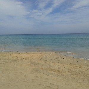 La plage située en bas de l'hôtel Marmara (Ambar Beach)