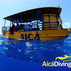 Barco AICÁ para mergulhos nos naufragios e fundo de arrecifes