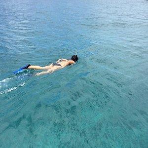 Snorkeling in Tintamarre