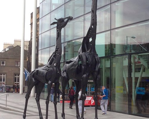 These giraffes are outside the Omni Centre
