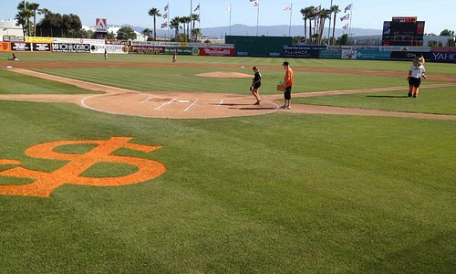 Palm trees and baseball. Hard to go wrong.