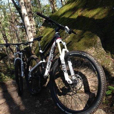 Buckwallow Mountain Bike Trails