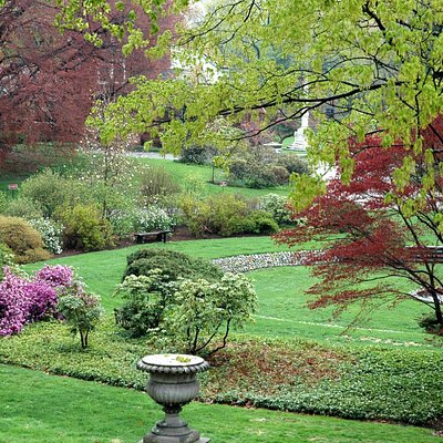 Asa Gray Garden in bloom