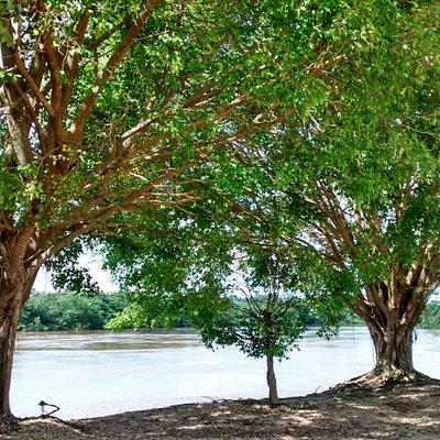 Rio caudaloso que inspira calma e concentração!