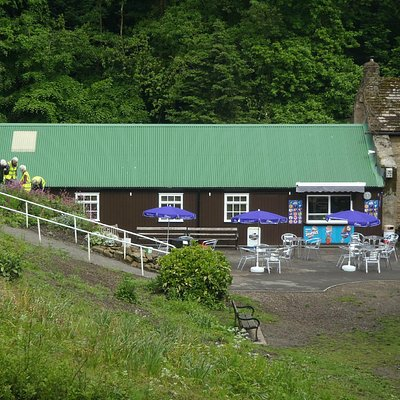 The cafe as seen from the back of the millpond