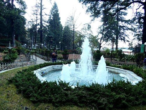 Municipal Garden