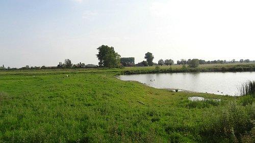 vue du plan d'eau