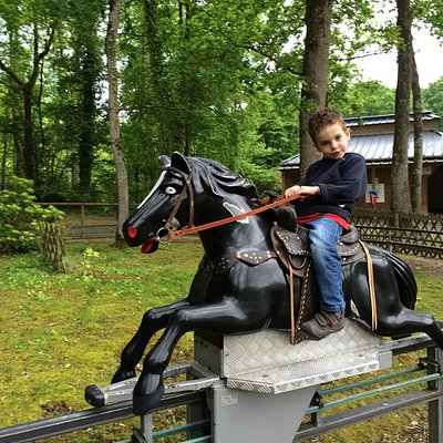 Les petits chevaux, un régal pour les petits��